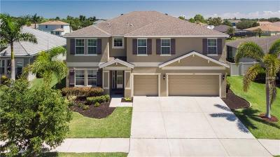 Apollo Beach Single Family Home For Sale: 154 Star Shell Drive