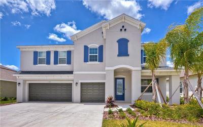 Wesley Chapel Single Family Home For Sale: 33481 Azalea Ridge Drive