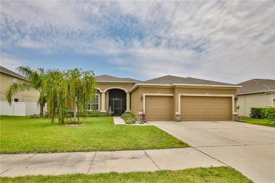 Ruskin Single Family Home For Sale: 202 Orange Mill Avenue