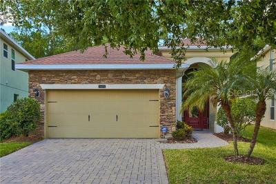 Tampa Single Family Home For Sale: 16076 Bella Woods Drive