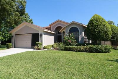 Hernando County, Hillsborough County, Pasco County, Pinellas County Single Family Home For Sale: 11415 Kingstree Court