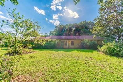 Wimauma Single Family Home For Sale: 15235 McGrady Road