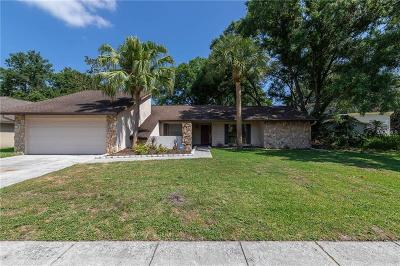 Tampa Single Family Home For Sale: 1032 Sylvia Lane