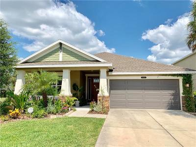 Land O Lakes Single Family Home For Sale: 9151 Bella Vita Circle