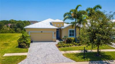 Apollo Beach Single Family Home For Sale: 419 Bahama Grande Boulevard