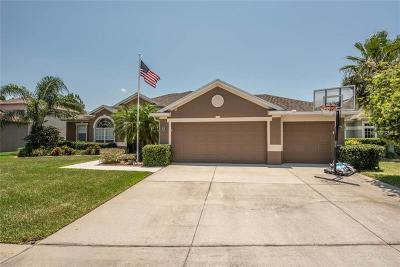 Riverview Single Family Home For Sale: 11755 Newberry Grove Loop