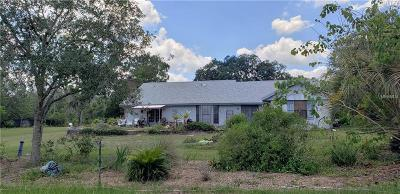 Spring Hill Single Family Home For Sale: 18640 Gracie Lee Street
