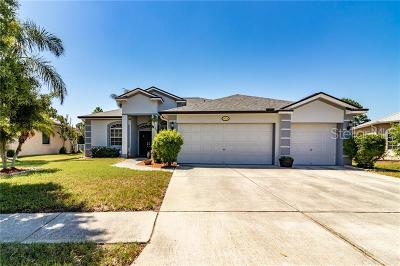 Riverview Single Family Home For Sale: 10916 Sailbrooke Drive
