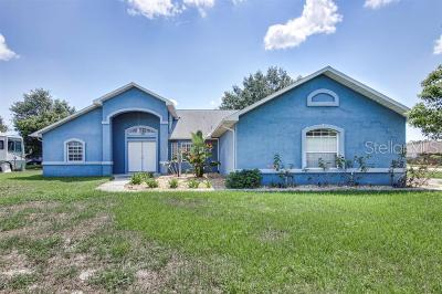 Spring Hill Single Family Home For Sale: 9723 Langan Street