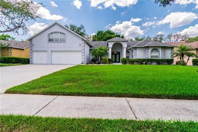 Bloomingdale Single Family Home For Sale: 2528 Regal River Road