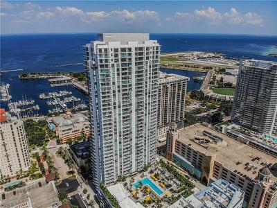 400 Beach Drive Condo, Bayfront Tower Condo, Bliss, Cloister Of Beach Drive Condo, Florencia Condo, One St. Petersburg, Ovation Condo, Parkshore Plaza Condo, Salvador, Signature Place Condo, The Bezu, The Salvador, Vinoy Place Condo Condo For Sale: 100 1st Avenue N #3607