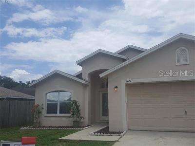 Valrico Single Family Home For Sale: 1121 Soaring Osprey Way
