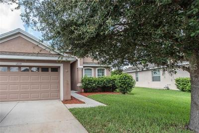 Riverview Single Family Home For Sale: 12719 Whitney Meadow Way
