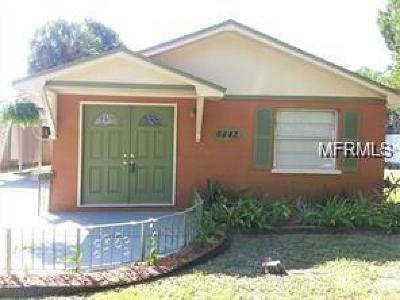 New Port Richey Single Family Home For Sale: 6443 Werner Avenue