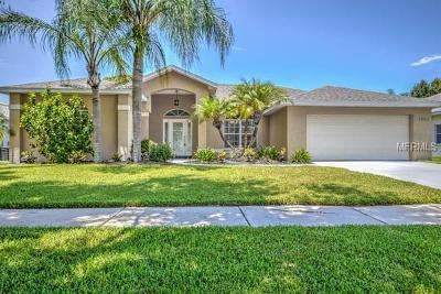 Ruskin Single Family Home For Sale: 1502 Ventana Drive
