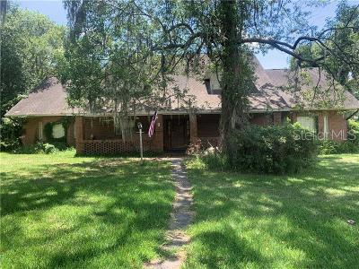 Valrico Single Family Home For Sale: 1810 S Valrico Road