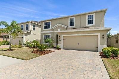 Riverveiw, Riverview, Riverview/tampa Single Family Home For Sale: 11420 Emerald Shore Drive