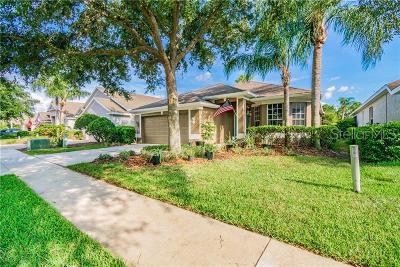 Valrico Single Family Home For Sale: 3228 Stonebridge Trail