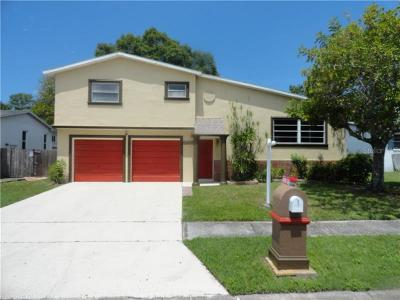 Pinellas Park Single Family Home For Sale: 11460 61st Street N