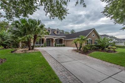Lithia Single Family Home For Sale: 6134 Kestrelridge Drive