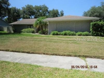 Valrico Single Family Home For Sale: 3066 Wister Circle