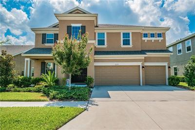 Apollo Beach Single Family Home For Sale: 6319 Voyagers Place