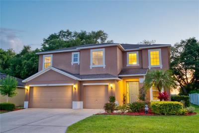 Lakeland Single Family Home For Sale: 6811 Hampshire Boulevard