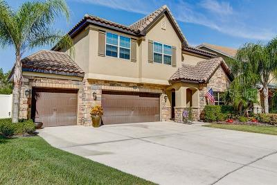 Tampa Single Family Home For Sale: 19230 Pepper Grass Drive