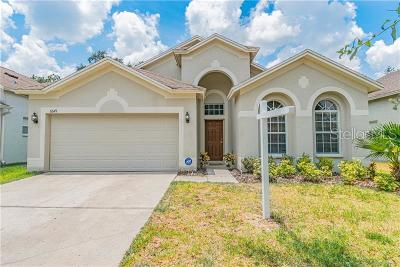 Wesley Chapel Single Family Home For Sale: 6649 Bluff Meadow Court