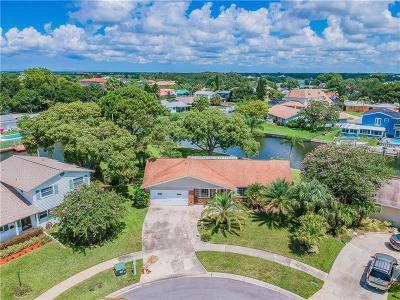 Tampa Single Family Home For Sale: 8725 Cobblestone Drive