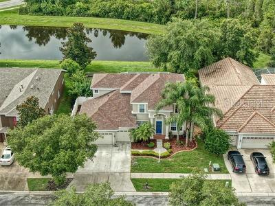 Tampa Single Family Home For Sale: 8203 Nature Cove Way