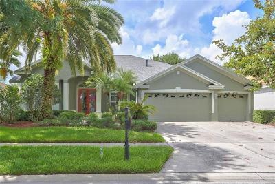 Tampa Single Family Home For Sale: 19115 Autumn Woods Avenue