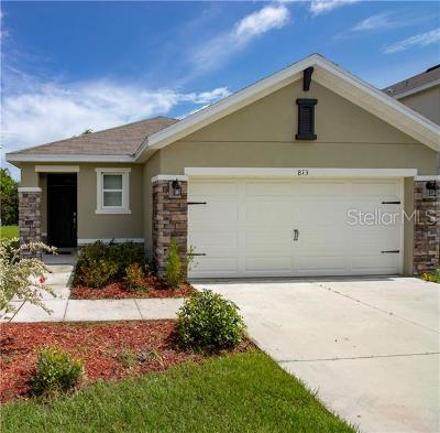 Plant City Single Family Home For Sale: 813 Wiltonway Drive