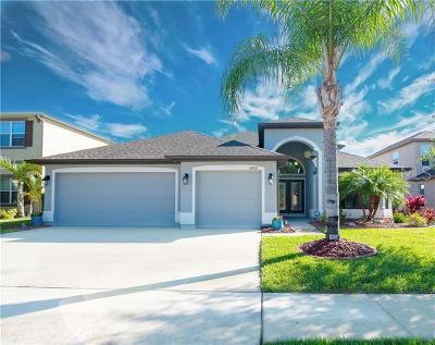 Wesley Chapel Single Family Home For Sale: 4808 Diamonds Palm Loop