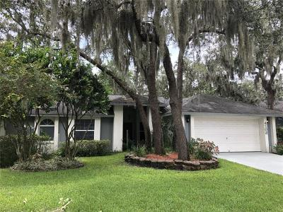 Plant City Single Family Home For Sale: 4103 Kipling Avenue