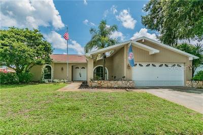 New Port Richey Single Family Home For Sale: 9728 Via Segovia