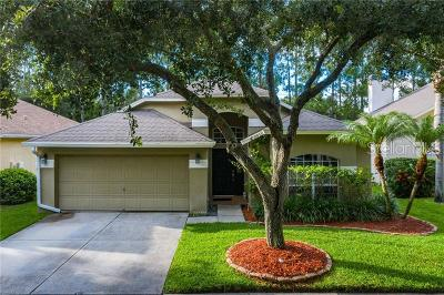 Tampa Single Family Home For Sale: 11833 Derbyshire Drive