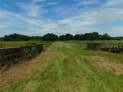 Plant City Residential Lots & Land For Sale: 1517 Holloman Road