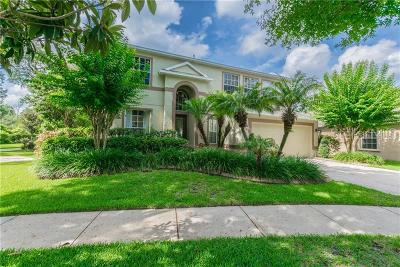Hillsborough County Single Family Home For Sale: 732 June Lake Lane