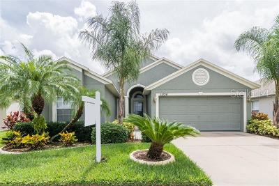 Riverview Single Family Home For Sale: 11134 Rodeo Lane