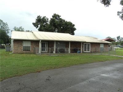 Zephyrhills Single Family Home For Sale: 39746 Otis Allen Road