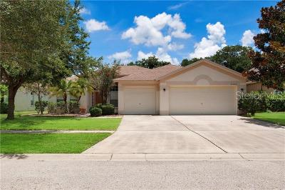Apollo Beach Single Family Home For Sale: 7308 Carrington Oaks Lane