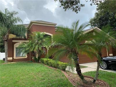 Valrico Single Family Home For Sale: 4225 Trumpworth Court