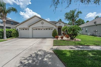 Riverview Single Family Home For Sale: 11304 Callaway Pond Drive