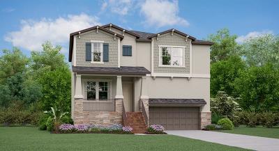 Tampa Single Family Home For Sale: 4736 W Iowa Avenue