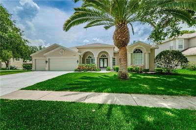 Palm Harbor Single Family Home For Sale: 4185 Amber Lane