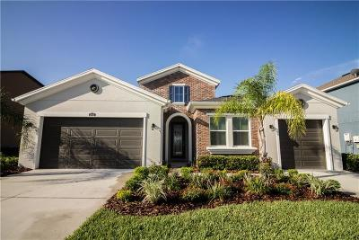 Pasco County Single Family Home For Sale: 29431 Picana Lane