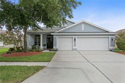 Tampa Single Family Home For Sale: 10125 Downey Lane