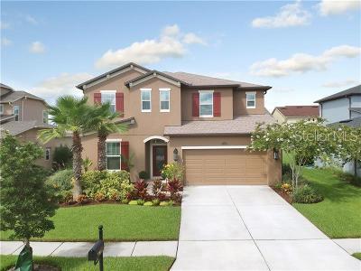 Wesley Chapel Single Family Home For Sale: 4532 Scarlet Loop