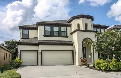 Hillsborough County Single Family Home For Sale: 13826 Moonstone Canyon Drive